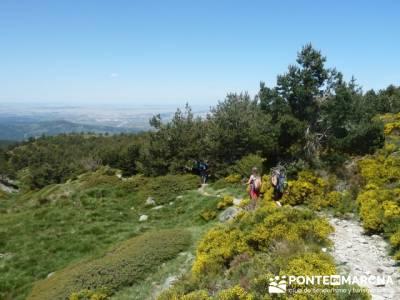 Ruta senderismo Peñalara - Parque Natural de Peñalara; senderismo alcobendas